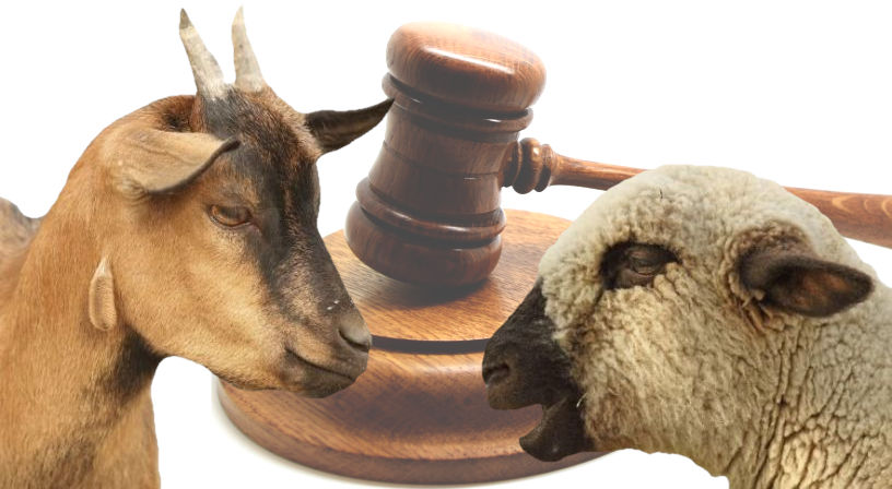 Judgment of the sheep and the goats.