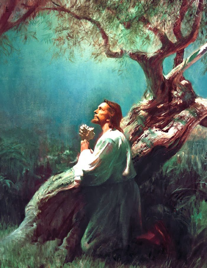 Jesus at the olive tree